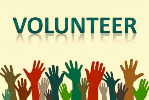 Volunteer Opportunities with GWSA