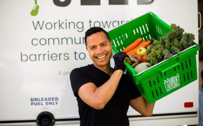 Online Groceries: The SEED